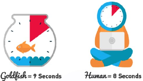 Attention span, Human intellect, and eCommerce performance